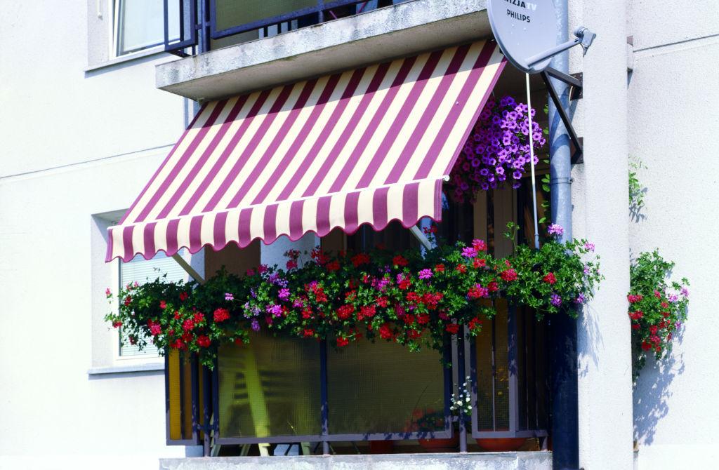 Markizės Italia balkoninė | RollHouse